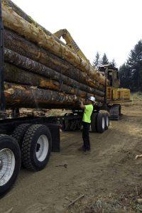 Siletz Trucking